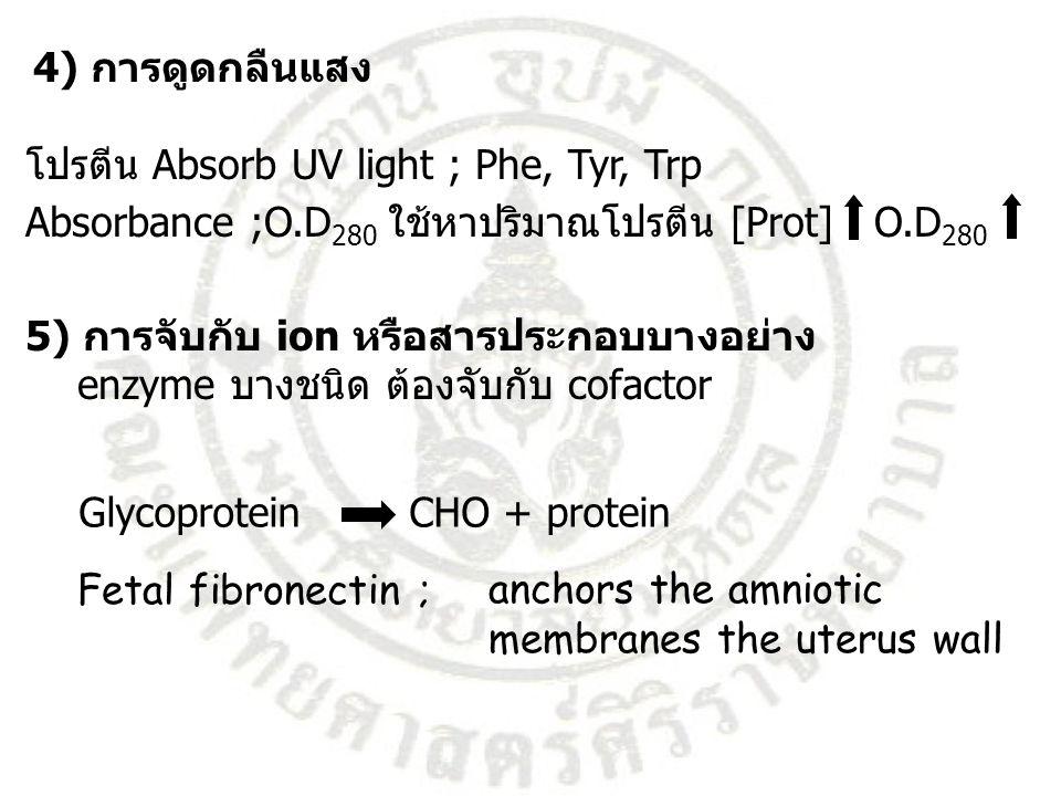 4) การดูดกลืนแสง โปรตีน Absorb UV light ; Phe, Tyr, Trp. Absorbance ;O.D280 ใช้หาปริมาณโปรตีน [Prot] O.D280.